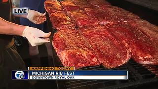 Michigan Rib Fest - Video