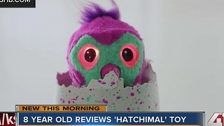 8-year-old reviews 'Hatchimal' toy - Video