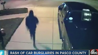Rash of car burglaries in Pasco County, Deputies warning residents to lock cars - Video