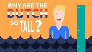 Just why are the Dutch so tall? - Video