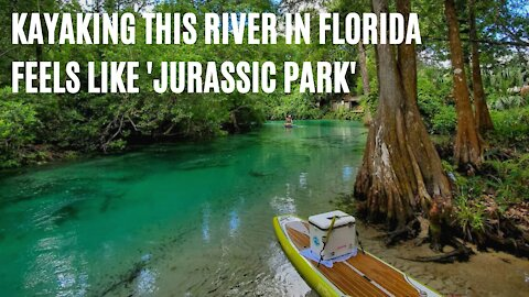 You'll Feel Like You're In 'Jurassic Park' Kayaking Down This 7.4-Mile River In Florida