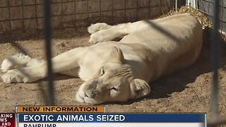 Exotic animals seized from Pahrump home, second time this month