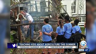 'Yesteryear Village' teaches children about history, farming - Video