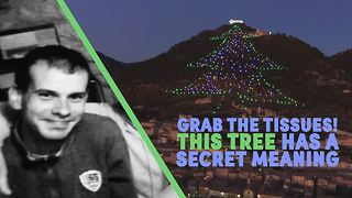 World's biggest Christmas tree helps heal hearts - Video