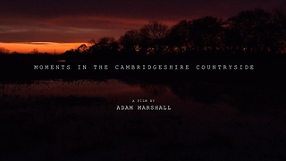 Timelapse Shows Cambridgeshire Countryside - Video