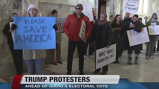 Dozens protest Trump presidency