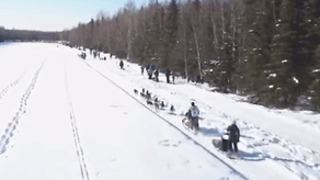 Mushers Dash Across Ice in Iditarod Ceremonial Start - Video
