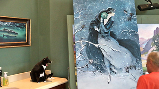 Sid the Cat has a funny conversation about a painting  - Video
