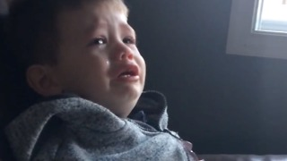 Adorable boy devastated after his dog eats his granola bar  - Video