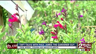 In The Garden with Paul James - Video