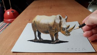 How to draw a 3D rhinoceros - Video