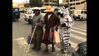 Bolivian Traffic Zebras - Video