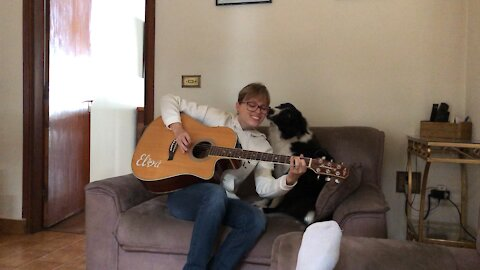 Dog gets happy when listening to a famous rock song