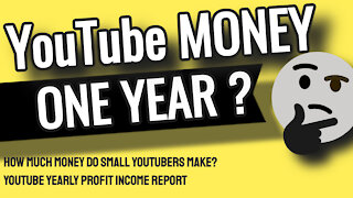 HOW MUCH MONEY DO SMALL YouTubers MAKE? - Youtube Yearly Profit Income Report 2021