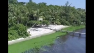 New report on state's response to toxic algae - Video