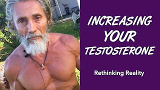 Rethinking Reality: Increasing Your Testosterone | Dr. Robert Cassar