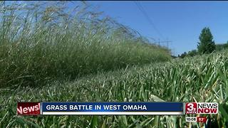 Grass battle in West Omaha