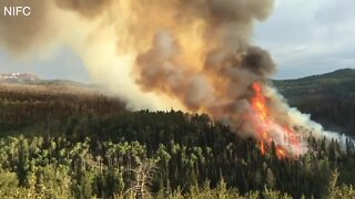 U of I project aims to teach people about wildfires through story telling
