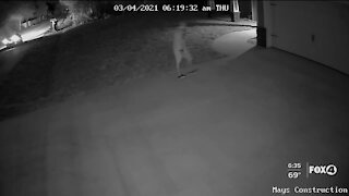 Deputies searching for man who stole equipment from a home