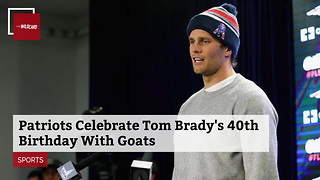Patriots Celebrate Tom Brady's 40th Birthday With Goats - Video