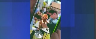 Dog allegedly forced to drink beer