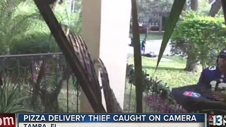 Thief caught stealing packages from doorstep - Video
