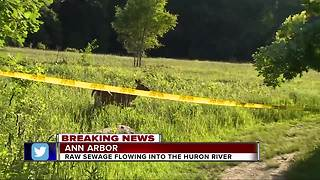 300,000 gallons of raw sewage spilling near Huron River has many concerned - Video