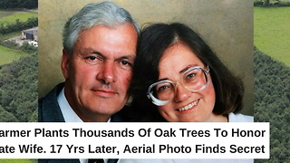 Farmer Plants Thousands of Oak Trees to Honor Late Wife. Seventeen Years Later, Aerial Photo Finds Secret - Video