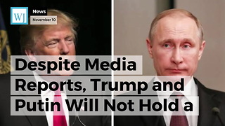 Despite Media Reports, Trump and Putin Will Not Hold a Formal Meeting During APEC Summit - Video