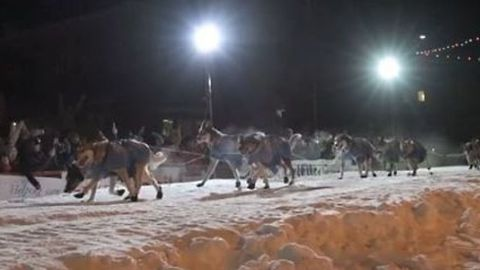Norwegian Musher Wins 2018 Iditarod After Second-Place Musher Takes Wrong Turn