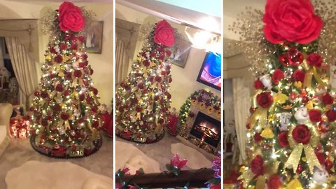 A tree as old as time! Crafty grandma spends a year creating magical Beauty and the Beast Christmas tree for Disney-mad granddaughter – because family couldn't afford to go to Disneyland