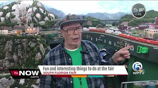 Fun and interesting things to do at the fair - Video