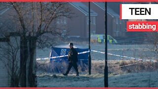 Police launch murder probe after teenage boy is found stabbed to death