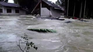 Father watches as flash flood destroys house - Video