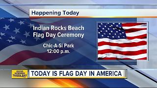 June 14 is National Flag Day - Video