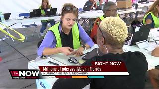Millions of temp jobs available for post-Irma recovery - Video
