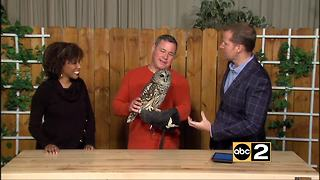 Expedition Chesapeake - Jeff Corwin - Video