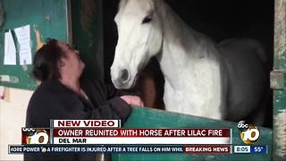 Owner reunited with horse after Lilac Fire - Video