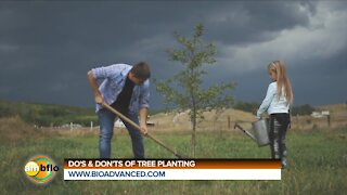 DO'S AND DON'TS OF TREE PLANTING