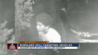 Prowler caught on camera in area hit hard by car burglars - Video