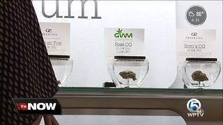 West Palm Beach Commission scheduled to vote on opening medical marijuana dispensaries - Video