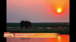 Elite Travel reveals African Safari travel deals - Video