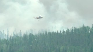 Buffalo Mountain Fire - Video