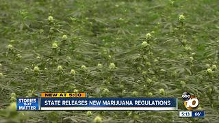California releases new marijuana regulations - Video