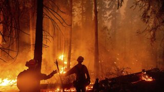Firefighters Battle Multiple Wildfires In California