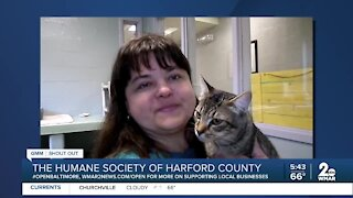 "Humane Society of Harford County says ""We're Open Baltimore!"""