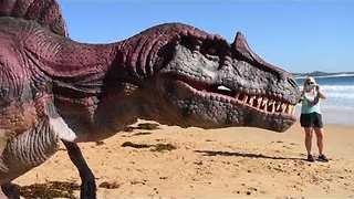 Dinosaurs Come 'Alive' on New South Wales Beach - Video