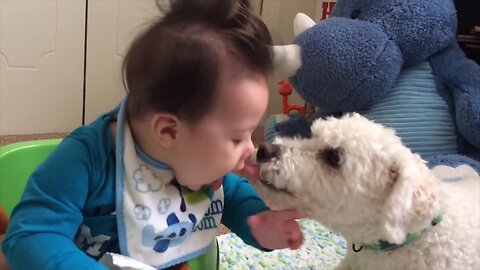 Dog and Baby are BFFs