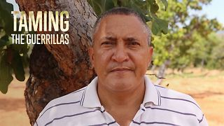 2 years later, a new path for ex-guerrillas - Video