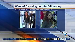 Woman sought in Palm Beach County counterfeit money case - Video